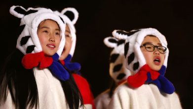 olympic tiger hats